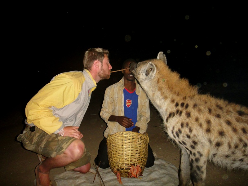 Have you ever dined with a Hyena?